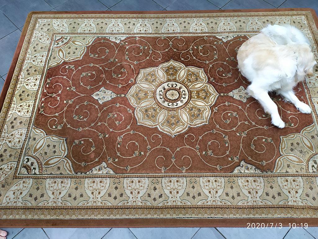 Realizacje-Klawe-Pranie-czyszczenie-dywanu-03-przed